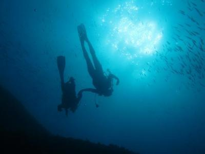 La plongée à Marseille