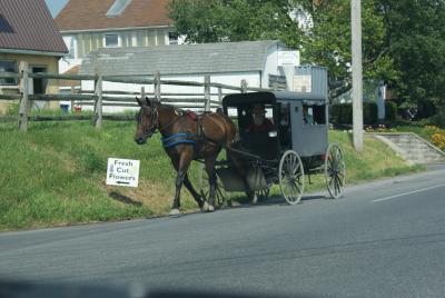 Les Amish de Lancaster