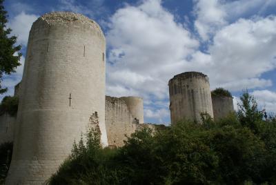 Château du Coudray-Salbart
